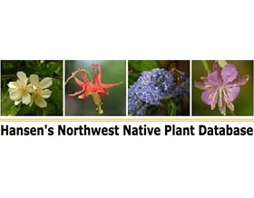 汉森西北乡土植物数据库, Hansen  Northwest Native Plant Database