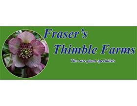 弗雷泽的顶针农场, Fraser's Thimble Farms