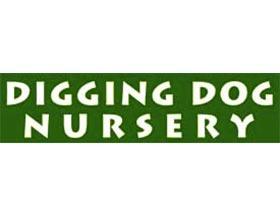 挖坑狗苗圃, Digging Dog Nursery