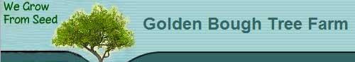 金枝树木农场,The Golden Bough Tree Farm