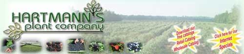 哈特曼植物公司,Hartmann's Plant Company