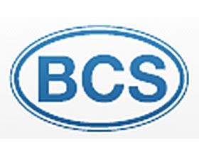 BCS美国公司, BCS America