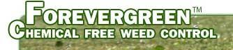 FOREVERGREEN景观和维护公司,FOREVERGREEN™ Landscaping & Maintenance