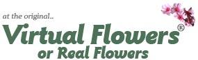 虚拟鲜花 Virtual Flowers