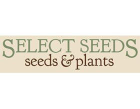 选择种子 Select Seeds