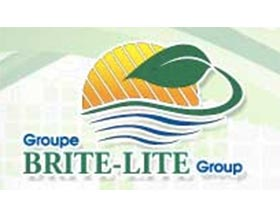 布莱特光源 ,BRITE-LITE Group
