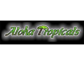 爱热带植物 ,Aloha Tropicals