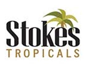 斯托克斯热带植物, Stokes Tropicals