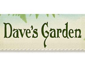 戴夫的花园Dave's Garden