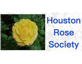 休斯顿月季协会 Houston Rose Society