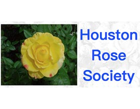 休斯顿月季(玫瑰)协会 Houston Rose Society