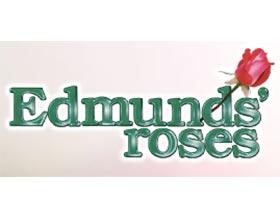 艾德蒙的月季 ,Edmunds' Roses
