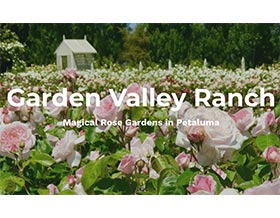花园山谷农场, Garden Valley Ranch