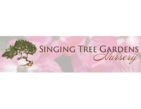 唱歌树花园苗圃 ,Singing Tree Gardens Nursery