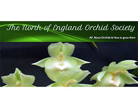 北英格兰兰花协会 The North of England Orchid Society