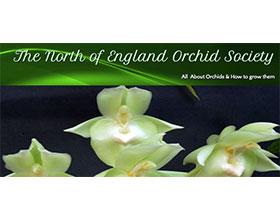 北英格兰兰花协会 The North of England Orchid Society