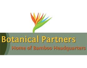 植物之友-竹子总部之家Botanical Partner Home of Banboo Headquarters