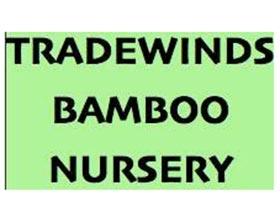 美国Tradewinds 竹子苗圃 Bamboo Nursery