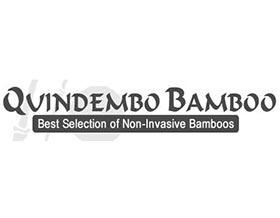 Quindembo Bamboo,竹子苗圃