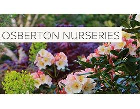 Osberton 苗圃, Osberton Nurseries
