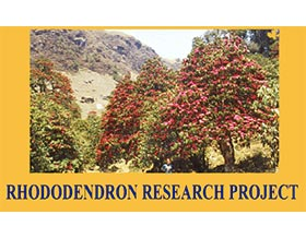 杜鹃研究计划 ,RHODODENDRON RESEARCH PROJECT