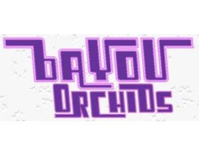 海湾兰花 ,BAYOU ORCHIDS