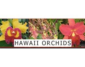 夏威夷兰花 Hawaii Orchids