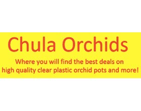 Chula Orchids