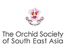 东南亚兰花协会 Orchid Society of South East Asia