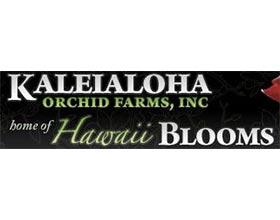 KALEIALOHA兰花农场 ,KALEIALOHA ORCHID FARMS