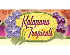卡拉帕热带植物公司, Kalapana Tropicals Inc.