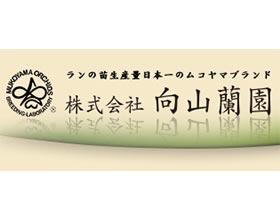 向山兰园株式会社, Mukoyama Orchids Co.Ltd