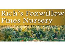 美国Foxwillow 松树苗圃 Pines Nursery