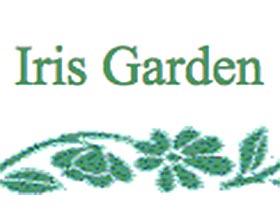 鸢尾花园 Iris Garden