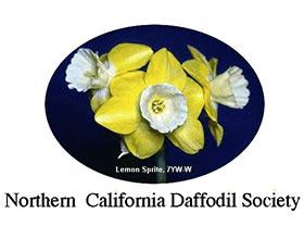 北加州水仙花协会, Northern California Daffodil Society(NCDS)