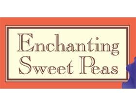 迷人的香豌豆种子, Enchanting Sweet Peas Seeds