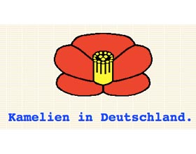 德国的山茶花 Kamelien in Deutschland