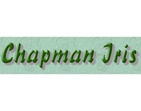 查普曼鸢尾 Chapman Iris