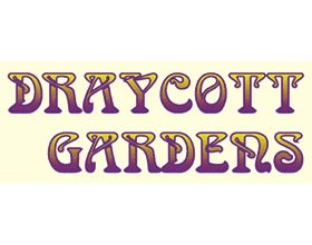 美国德雷科特花园 DRAYCOTT GARDENS