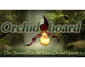 兰花论坛 Orchid Board