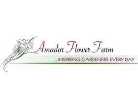 阿马多尔花卉农场 Amador Flower Farm