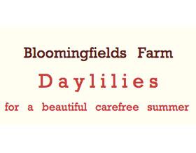 花田农场 ,Bloomingfields Farm