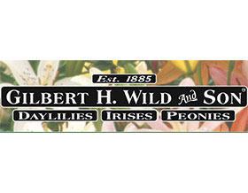 美国Gilbert H. Wild & Son LLC宿根苗圃