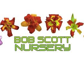 鲍勃史葛苗圃 ,Bob Scott Nursery