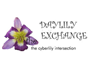 萱草交换 Daylily Exchange