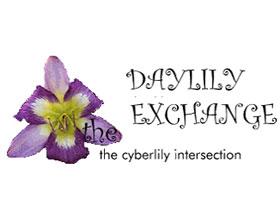 萱草交换 Daylily Exchange