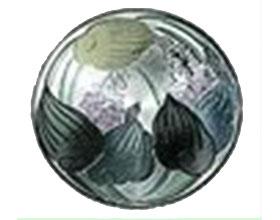 美国玉簪协会, American Hosta Society
