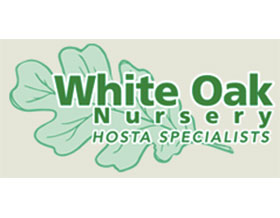 白橡树苗圃, White Oak Nursery