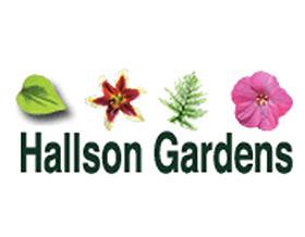 哈尔森花园 ,Hallson Gardens
