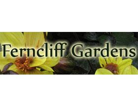 克里夫花园 ,FERNCLIFF GARDENS